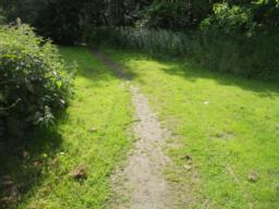The path was originally constructed  to 1.40m width. However, vegetation has encroached on the path creating an available width of 50cm.