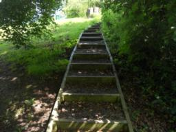 These steps lead up to a restrictive 'squeeze gap' at the top of the site. Retrace the path to the junction with the bench to continue along the rest of the trial.