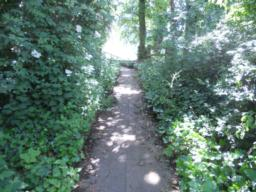 Initially, the path is paved and has a linear gradient of 8%  over a short distance.