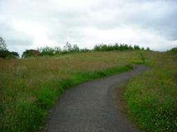 Path leads uphill slightly back to interpretation panels. From here proceed back to car park.