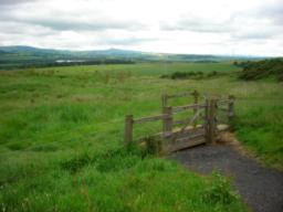 Gate (one of three) to other routes in the woodland - continue on path