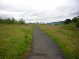 Continue along path, and keep going uphill, following right hand path back towards interpretation panels. Steeper here.