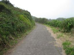 this part of the path is metalled and has a good even surface.