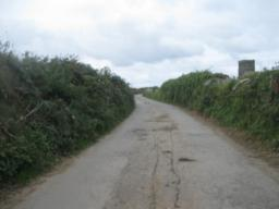 road leading to shoot