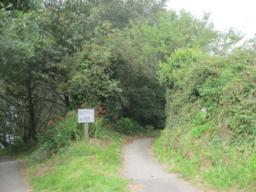 start of the path down to the bird hide.
