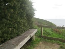 a seat and view point just to theright of the path