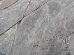The trail leads to probably the most extensive set of cup and ring marked rocks in Britain.