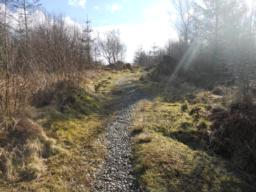 The path contains a number of different surface types that blend naturally into the landscape.