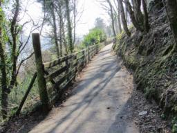 Path wider 1.6m