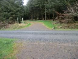 After 110 metres the gravel path meets a hard-packed gravel road approx 4 mteres wide. Cross orad and continue forward.