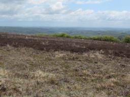 View across Exmoor from the ridge line.