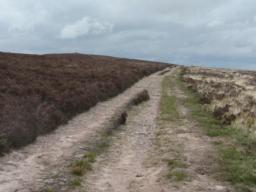 Typical path along top of ridge towards beacon and cairn.
