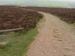 Typical path leading down from Beacon towards road.