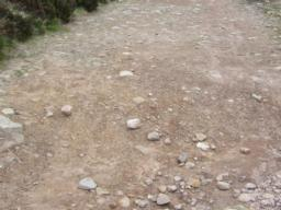 Typical gravel path.
