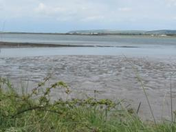 Views across the River Taw tidal estuary.
