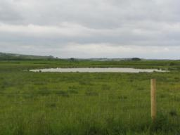 One of several ponds for bird life.