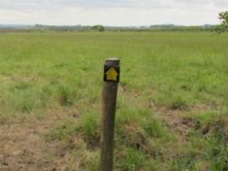 Signpost marking trail direction across field. Not very clear.