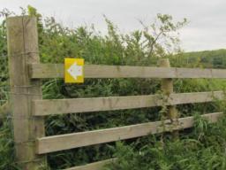 signpost marker.