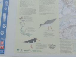 Information on local birdlife.