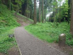 The path is 2m wide for most of its length and has a good, hard surface.