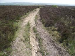 Track can be rutted in places but wide (1m20) enough to walk around