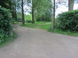 Woodland footpath.