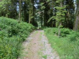 After 10 metres walk along this pathway is of small loose stones and quite a steep gradient of 25% (1:4).