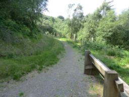 The pathway turns sharply to the left, heading westwards along the hillside; it is about 3 foot wide and made of packed gravel; there are level  grass verges.