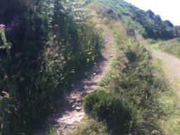 The path up is a little steep (16 degrees) for a few metres but soon evens out