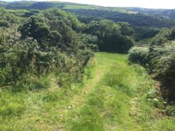 About 40 yards beyond Martinhoe there is a wide graa opening to the right