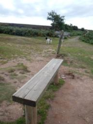 sturdy bench with great views towards Wales and the Bristol Channel