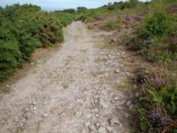 10% gradient up stoney track