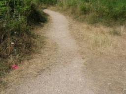 This time take the path leading off the tarmac track. It is a 1 metre
