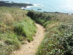 The final section where the higher path drops down steeply to rejoin the Coast Path is, along with the climb up from the viewpoint,