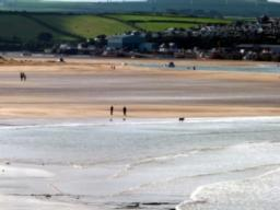 When the tide is out the Camel estuary is a lovely place to walk your dog!