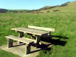 A picnic table beckons those with food and drink to consume.