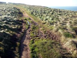 The path keeps its width but has muddy areas after rain.