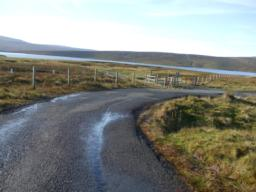 Aluminium markers on fencing to prevent Grouse flying into the fence