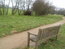 This is the first of only two seats along the trail.