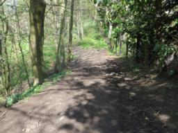 Path comprises of compacted/loose gravel and compacted soil in places.