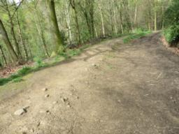 Path comprises of compacted/loose gravel or compacted soil and is rutted in