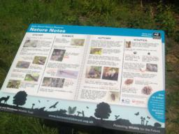 The information board tells you about the seasons in Balls Wood.
