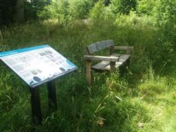 A seat with arm rests is next to an information board telling you more about the nature reserve.