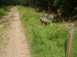 There are 13 seats on the side of this trail. Check the tags to see their location around the trail.