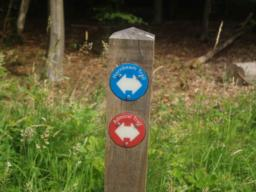 Follow the red Admiral Trail way marks.