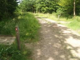 Take the trail to the left shown by the red way mark. It leads over a small bridge that is over a metre wide.