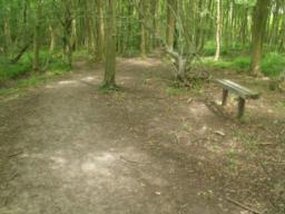 A simple bench provides a further resting point.