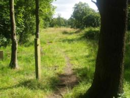 This path comes from the car parking spaces along the Roundings.