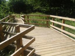 A viewing platform over one of the wet areas of the woodland may help you see some interesting wildlife.