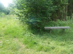 A bench provides another rest point.